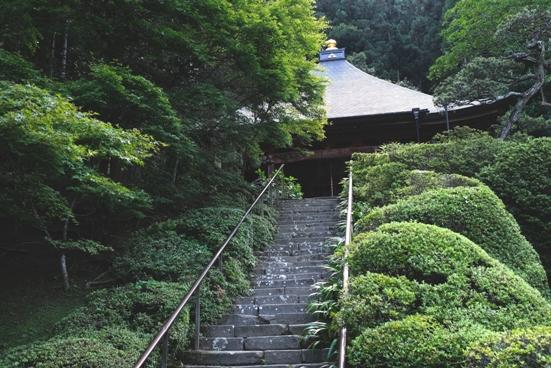 30番法雲寺階段.JPG
