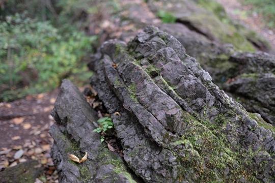 琴平ハイキングコース(26番岩井堂から27番大渕寺へ行く尾根道の岩).JPG