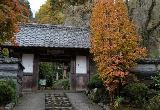 27番大渕寺(月影堂) 左山上に護国観音が見える.JPG